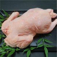 国産若鶏中抜き 1K前後 1羽1280円 冷蔵